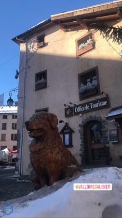office de tourisme valloire sculpture chien dog wood